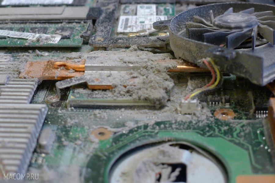 стильный лук после чистки ноутбук все равно шумит почему узнавать, чему