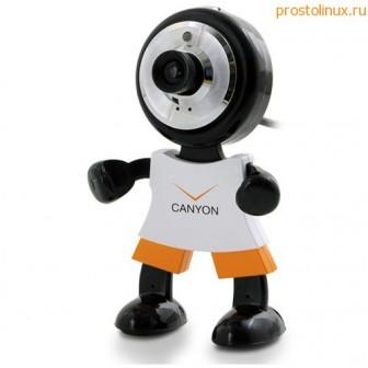 Web камера в Linux